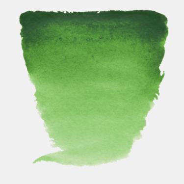HOOKER GREEN LIGHT
