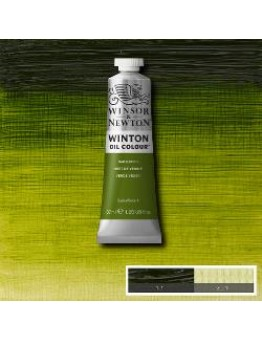 WINTON  SAP GREEN