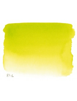 BRIGHT YELLOW GREEN