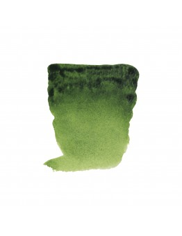 REMBRANDT SAP GREEN