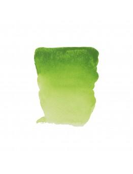 REMBRANDT PERMANENT YELLOWISH GREEN